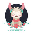 sweet llama portrait and christmas flower vector image vector image