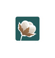 cotton flower logo template vector image