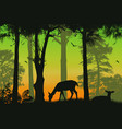 forest wildlife poster deers silhouettes on vector image vector image
