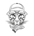 hipster leopard cool sketch vector image vector image