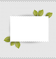 horizontal blank white sheet paper and green vector image vector image