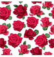 isolated roses pattern vector image vector image