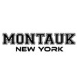 montauk new york urban typography for silk screen vector image vector image