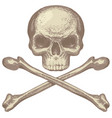 skull and crossbones pirate symbol or danger sign vector image vector image
