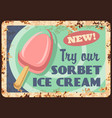 sorbet ice cream popsicle rusty plate vector image vector image