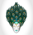Vector peacock mask vector image