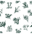 pattern of the sketches of different flowers vector image vector image