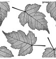 seamless pattern with skeletonized leaves vector image vector image