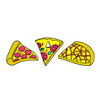 Set of various types of pizza vector image vector image