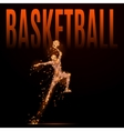 basketball man polygonal vector image