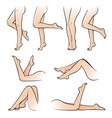 female legs set vector image