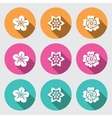 Flower icon set Primula daisy petunia orchid vector image