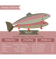 healthy collection fish vector image vector image