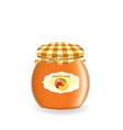 peach jam jar vector image vector image