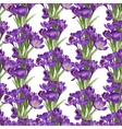 Seamless pattern from spring purple crocuses vector image vector image