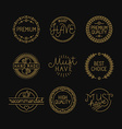 set of linear badges and labels vector image vector image