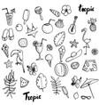 summer tropical beach doodle set vector image