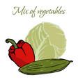 tasty veggies mix of vegetables vector image vector image