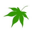 Green leaf on a white background vector image