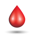 Blood drop on white background vector image
