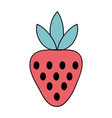 delicious strawberry organic fruit food vector image vector image