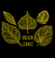 gold vein leaves set vector image vector image