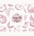 hand drawn oranges lemon apple and pear vector image