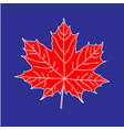 maple leaf on blue backdrop vector image