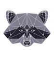 raccoon head polygonal vector image vector image