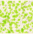seamless floral pattern with maidenhair fern leaf vector image vector image