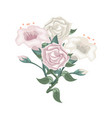 set of white and purple roses and tulips vector image vector image