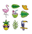 set tropical animals with fruits and leaves plants vector image vector image