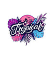 tropical hand written lettering vector image