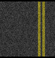 asphalt road with double yellow marking line vector image vector image