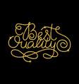 best quality glitter golden hand lettering vector image vector image