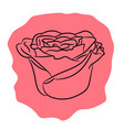 bud flower rose from the contour black lines of vector image