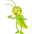 cartoon grasshopper presenting vector image vector image