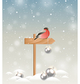 Christmas background with bullfinch vector image vector image