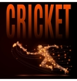 cricket player poly vector image vector image