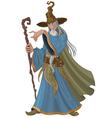 Fantasy Style Wizard vector image vector image
