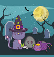 halloween cute cat cartoon vector image