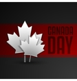 Happy Canada Day card in format vector image