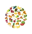 isolated collection of fresh healthy fruits vector image vector image
