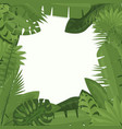 tropical green leaves of vector image vector image