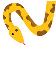 yellow python snake red tongue golden crawling vector image