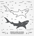 thin line icon and silhouette shark For web design vector image
