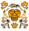 and logo on the topic of dogs vector image vector image