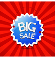 Big Sale Icon - Blue Label on Red Background vector image