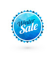 blue winter sale sign vector image vector image