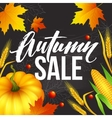 design banner autumn sale fall poster design vector image vector image